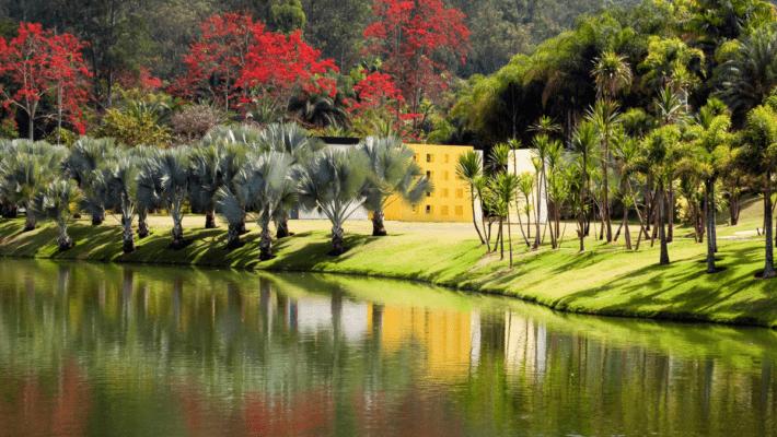 Museu Instituto Inhotim MG 710x400 - O que saber antes de visitar Inhotim, em Minas Gerais