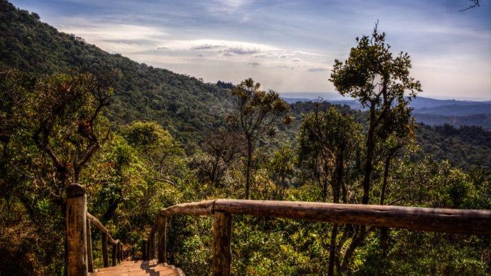 Trilha da Pedra Redonda Monte Verde 710x400 - Monte Verde: o que fazer, onde se hospedar e dicas